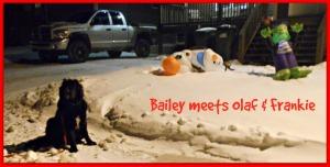Bailey Meets Olaf & Frankie